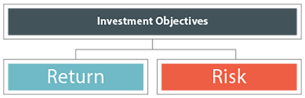 Nevastar - Investment Objectives
